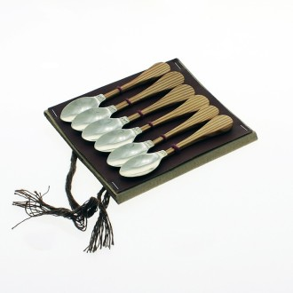 Six coffee spoons case