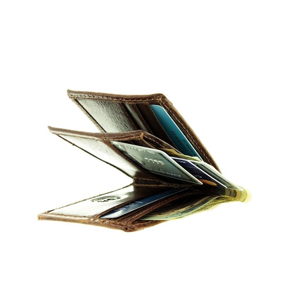 Bifold capybara dollar size wallet |El Boyero